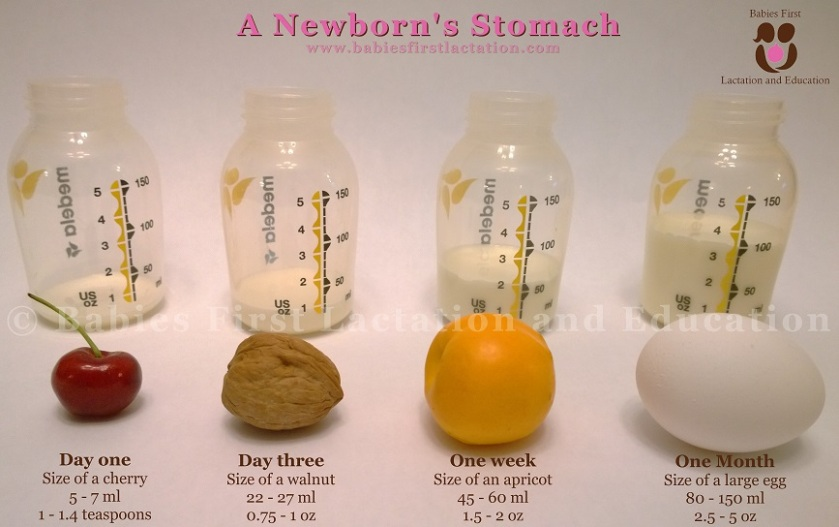 newborn-stomach-small.jpg